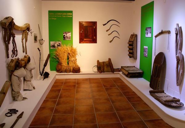 Museo Molino Lugar