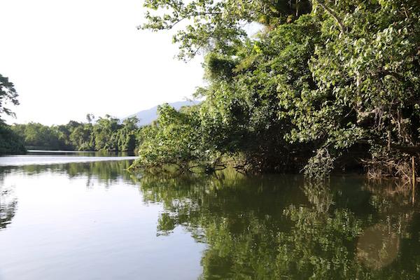Río Barron-Andorreando por el Mundo