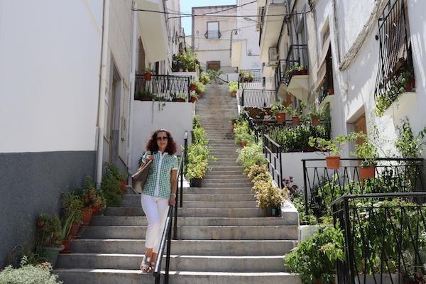 Calle Mario Paloma