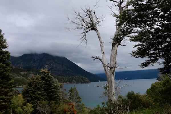 Reserva Natural protegida del Parque Municipal Llao Llao