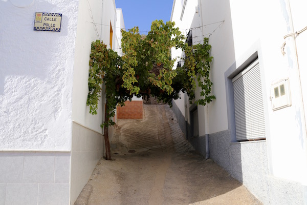 Calles Alicún