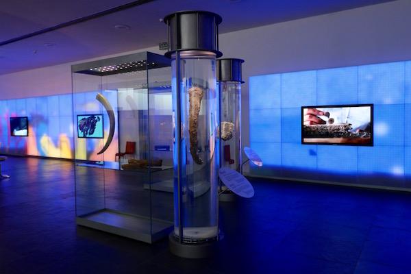 Exposición Museo Nacional de Arqueología Subacuática