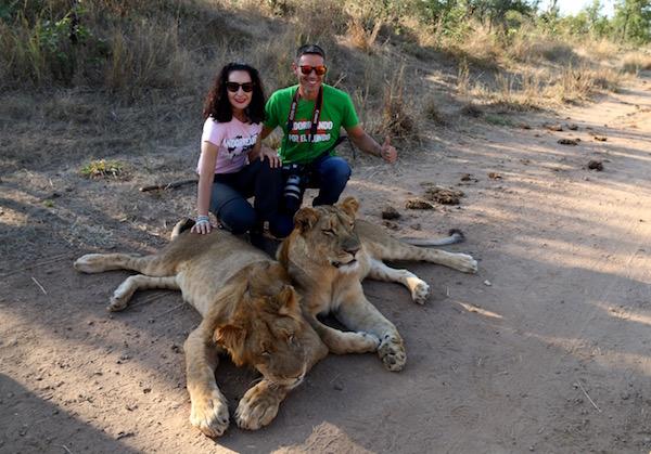 Leones Lion Encounter