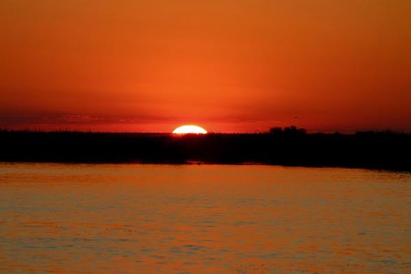 Atardecer Río Chobe.