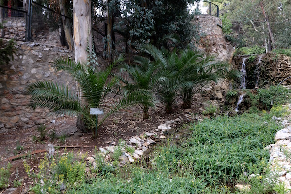 El Parque Salao