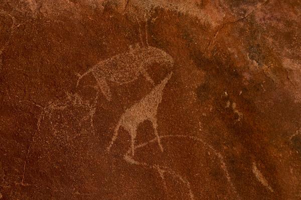 Grabados rupestres .