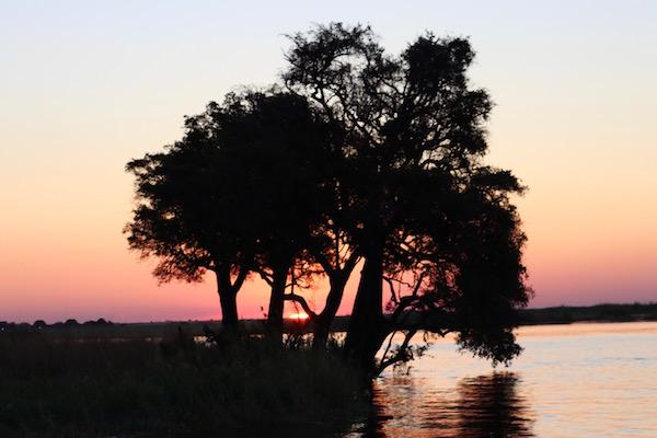 Paisaje Río Chobe