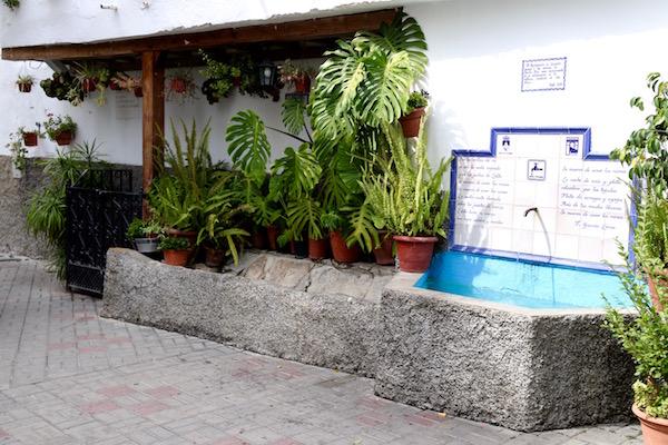 Pilar Placeta Santa Ana