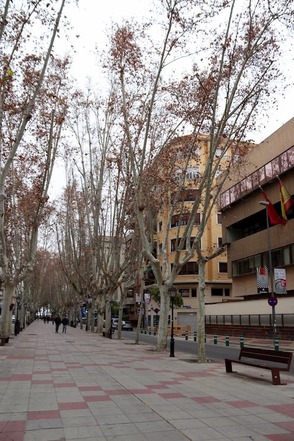 Avenida Alfonso X, el Sabio