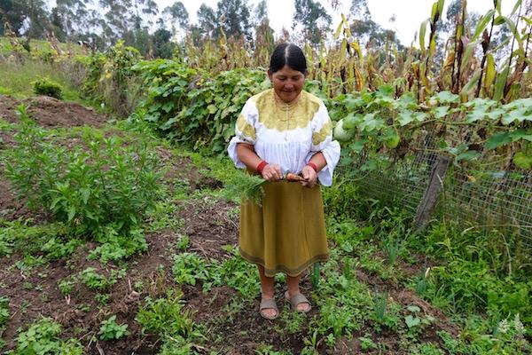 María indígena Comunidad San Clemente.