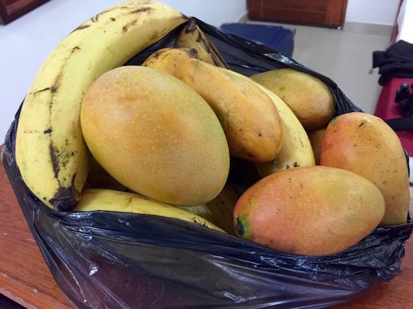 Fruta mangos y plátanos.