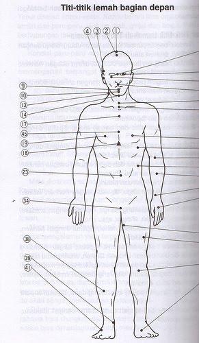 Cara Pukulan Mematikan : pukulan, mematikan, Teknik-teknik, Serangan, Mematikan, Lawan, Andra, Little, Notes