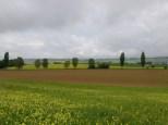 Buntes Klettgau