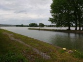 Rhein bei Nierstein