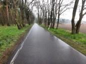 Kleine gerade Straßen. Sowas haben wir viel gesehen in Brandenburg.