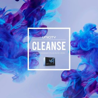 Andre Reichl_Cleanse