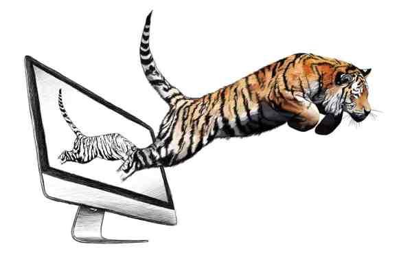 Tiger Illustration, Digital Painting