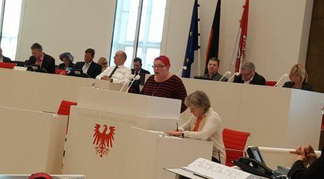 Rede zum Bericht der Landesregierung zur Situation von unbegleiteten minderjährigen Ausländern in Brandenburg