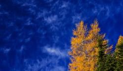 Cielo_autunno
