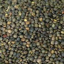 dark-green-speckled-lentils-1kg-1235-p