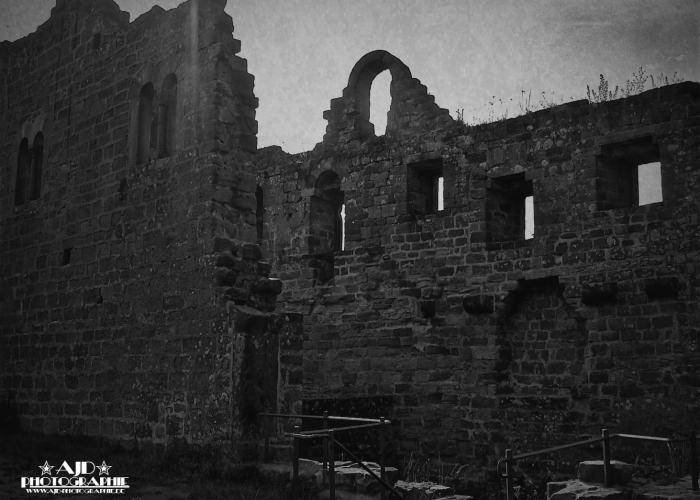 Burg Hohenecken 02