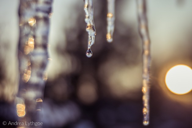Icicles-11