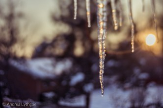 Icicles-12