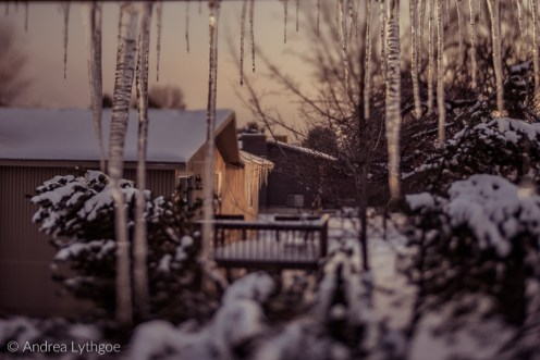 Icicles-14