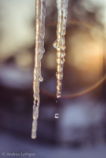 Icicles-2