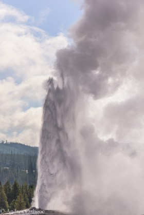 Yellowstone2015-9
