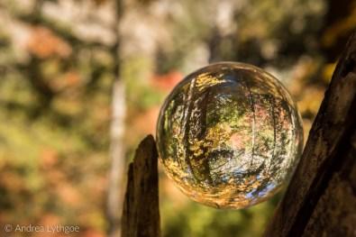 Fall Crystal Ball-2