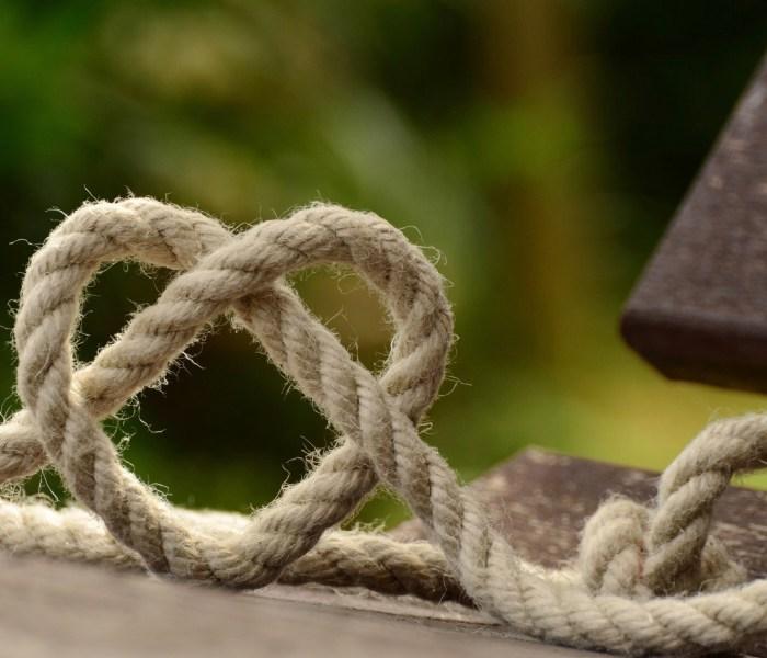 Staying tender: choosing forgiveness