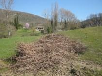primavera-a-vertine-14