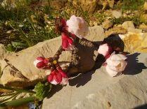 fiore di albicocco (3)