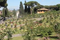 roseto di roma (12)
