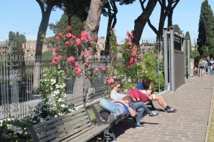 roseto di roma (7)