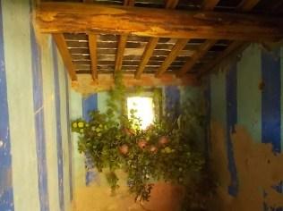 slow flowers podernovi chianti castello di brolio (34)