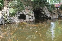 lizza siena degrado lago dei cigni (3)