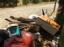 guistrigona rifiuti sulla strada (16)