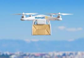 Risultati immagini per droni per consegne