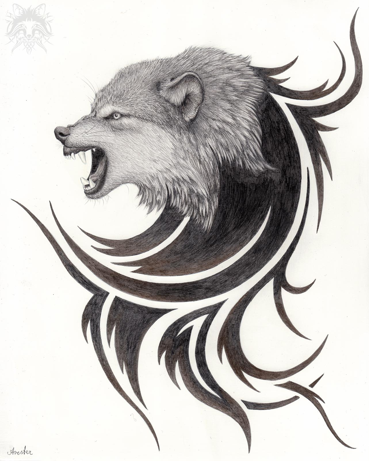 Metalpoint Drawing Snarling Wolf Tribal Art Of Andreas Avester