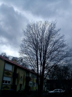 WOLKE(n)SchattierungenMYSTISCH((er))WELTen13