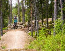 JärvsöBergscykelParkAndreasFransson0029