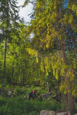 Jarvso Bergscykel Park 17 june