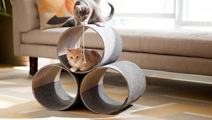 DIY cat house!