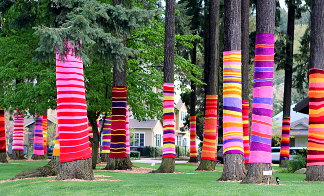 yarn bombed trees