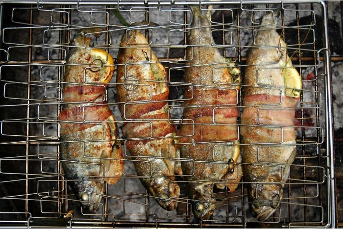 Fire grilled bacon-wrapped trout