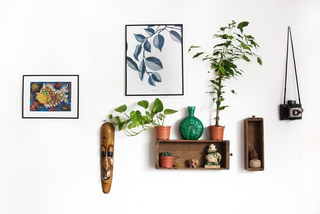 white wall plants face sculpture shelf paintings