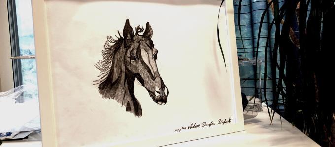 The horse AndreasRorqvist.org