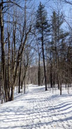 Sentier des lacs - Mont-St-Bruno